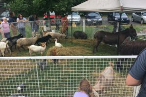 TomW_pettingZoo_Central